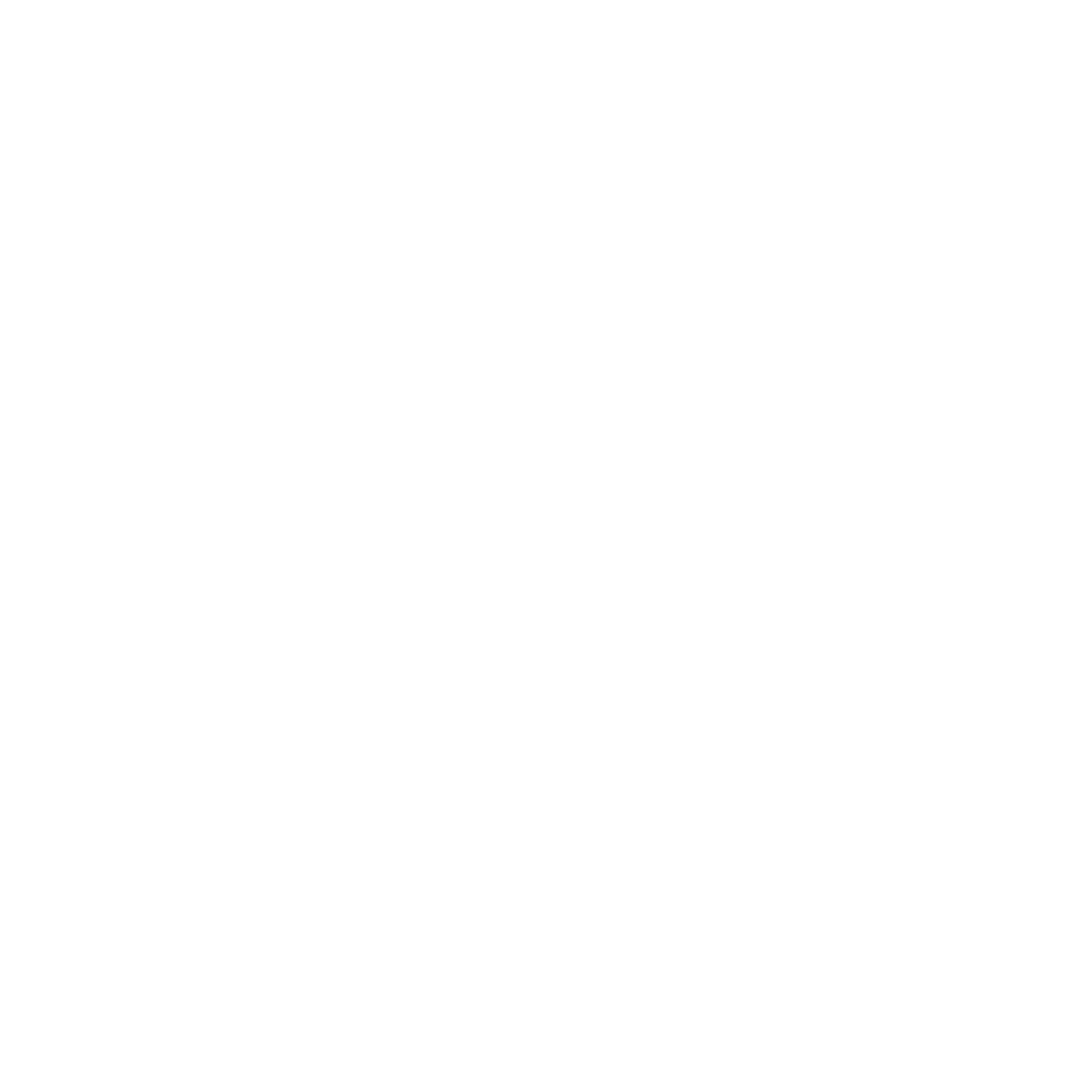 Social Rise Marketing